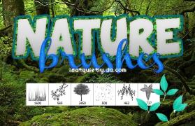 森林中的树木和绿叶PS笔刷