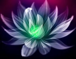 Photoshop设计绚丽光影效果的花朵教程