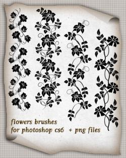 矢量风格的花朵藤蔓装饰PS笔刷