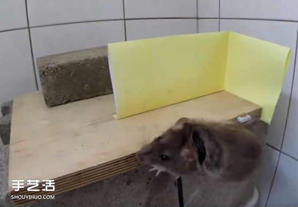 简易捕鼠器制作方法图解 自制捕捉老鼠的陷阱 -