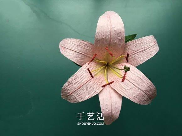 手工百合花制作方法 简单纸百合花的折法图解