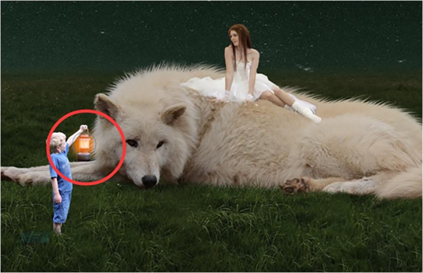 美女野兽:用PS合成灯光下的美女和野兽,PS教程,素材中国网
